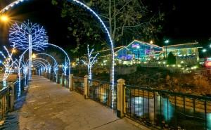 Aquarium lights 2012 copyright Dean Brown