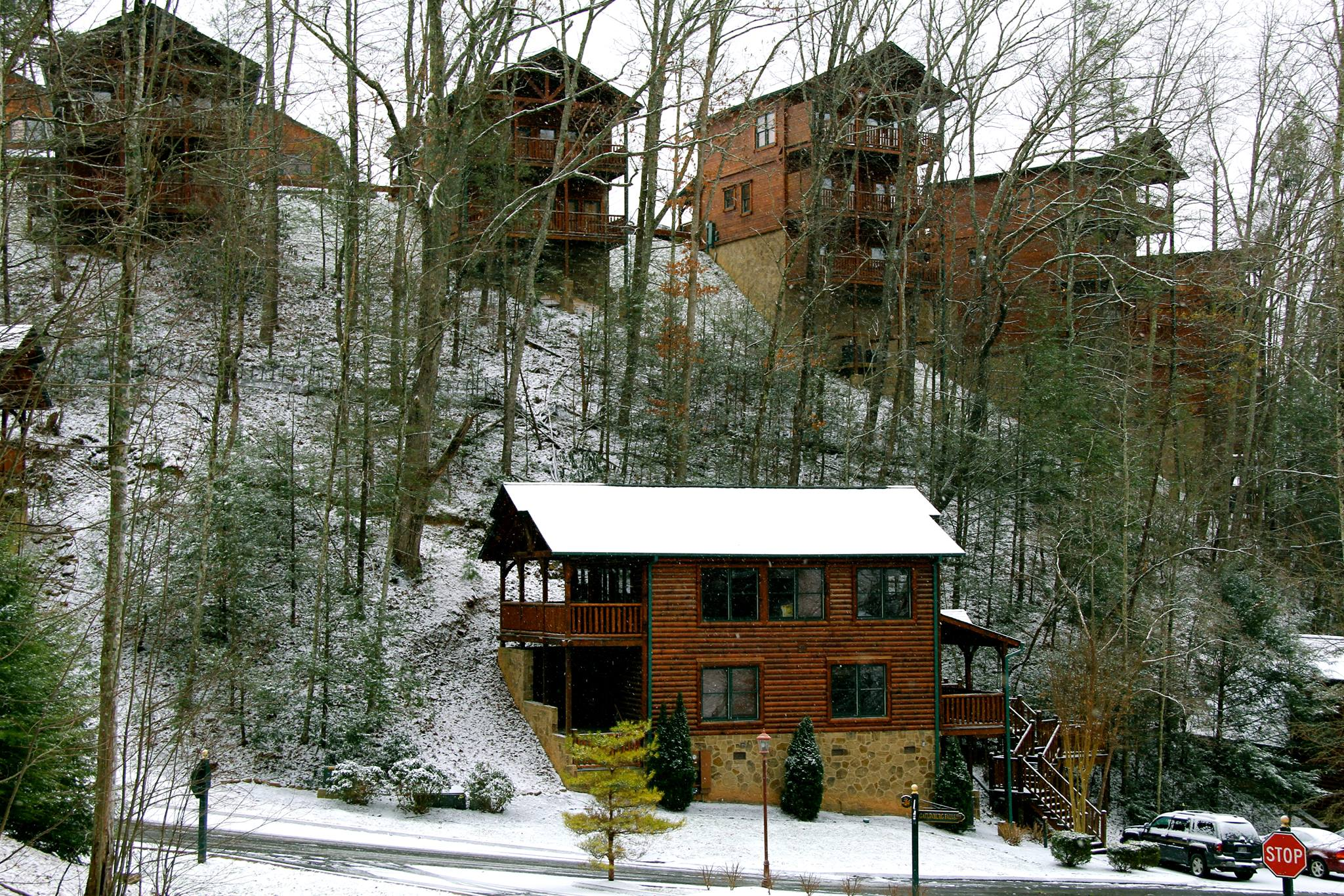 friendly by pet s tn luxury owner rentals near sale tennessee in for mountains smoky cabin cabins gatlinburg