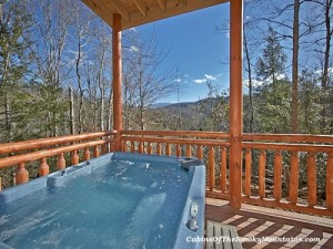 big bear plunge cabin with pool by pigeon forge