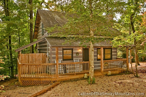 Good Vibrations 1 Bedroom Pigeon Forge Cabin