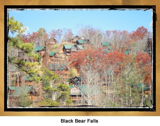 Black Bear Falls Resort Cabins And Amenities
