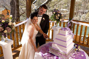 Wedding. Cutting the cake.