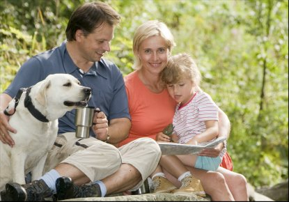 Pet Friendly Hiking Trails in the Smoky Mountains