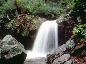 Grotto Falls, image courtesy of NPS