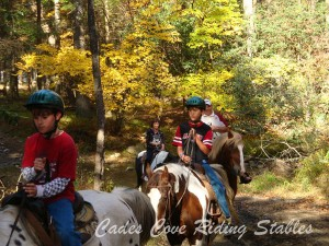 image courtesy of Cades Cove Riding Stables