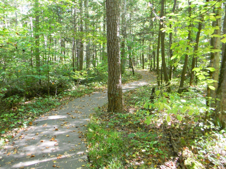 Gatlinburg Motor Trail Impremedia Net